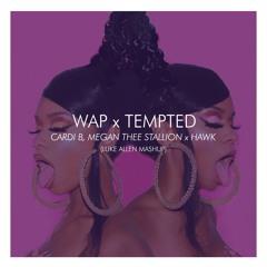 WAP X Tempted - Cardi B, Megan Thee Stallion X Hawk (LUKE ALLEN Mashup)