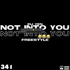 Not Into You (Prod. ShoBeatz)