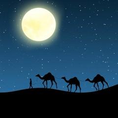 محمد الموجي - (ابتهال) كيف أُحصي بمسار النجم عمري