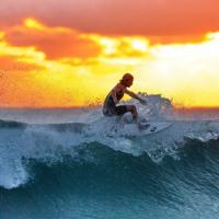 🎶 Tropical Surfing - JayJen & Lichu (No Copyright Songs) 🎶