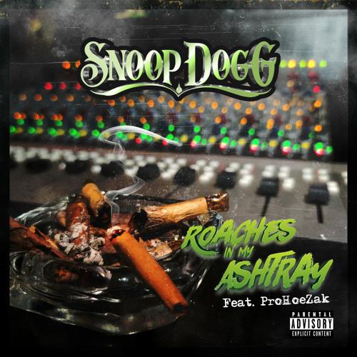 Roaches In My Ashtray (feat. ProHoeZak)
