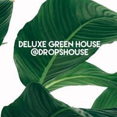 DELUXE GREEN @ DROPSHOUSE