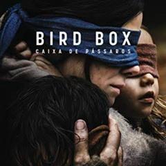 Caixa de Pássaros.aac