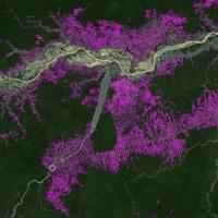 Amazonas burning