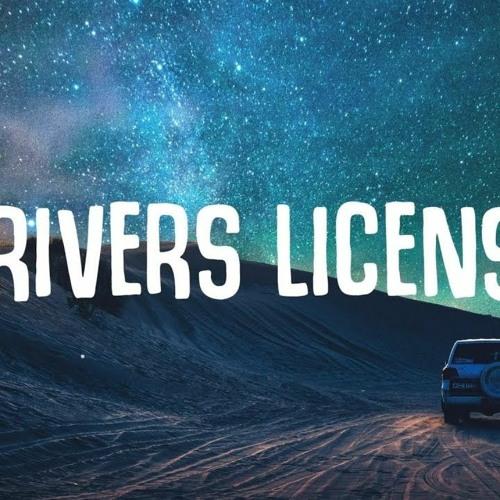 Driver's License Cover