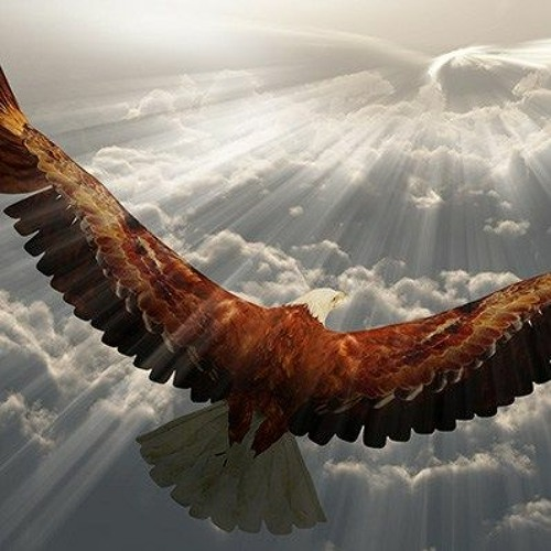 (Full Composition) Keep Soaring High By OsOs Sam