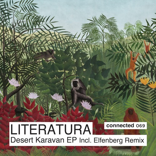 PREMIERE: Literatura - Night In The Oasis (Original Mix) [Connected]