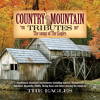 Best Of My Love (Country Mountain Tributes: The Eagles Album Version)