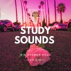 Download Study Sounds 100 Mp3