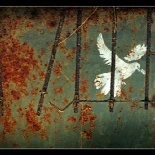 Jesus' Campaign of Nonviolence
