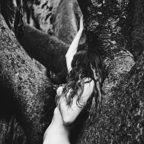 Tree To Leaf