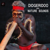 Australia - Traditional Didgeridoo Australian Music Didjeridu Sounds and Sounds of Nature Bird Sounds and Bush Stream Tropical Storm for Deep Sleep - Thunderstorm Sound and Rain Sound