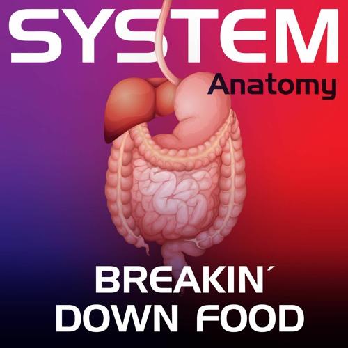 Breakin' Down Food