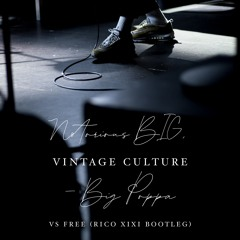Notorious BIG Vintage Culture - Big Poppa vs Free (RICO XIXI Bootleg)