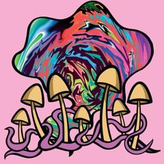wget - magic mushroom bass