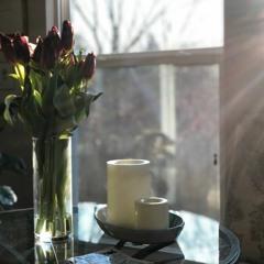 poem - tulips