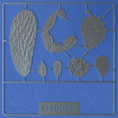Kindohm - Reclaimed 2