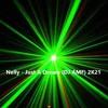Download Nelly - Just A Dream (DJ AMF) 2K21 Mp3