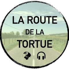 Etape 10 - Des yeux sensibles, un corps fragile - De Nasbinals à Toulouse
