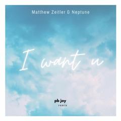 I Want U - Matthew Zeitler & Neptune (pb jay remix)