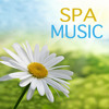 Spa Dreams - Instrumental Music for Day Spa