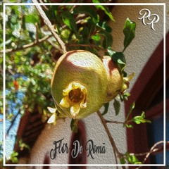 A Flor De Romã