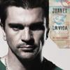 La Vida Es Un Ratico (Album Version)