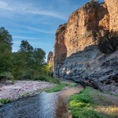 Aravaipa Creek at Dawn