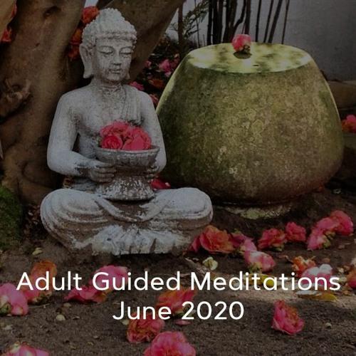 Adult Meditations - June 2020