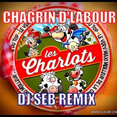 LES CHARLOTS CHAGRIN D'LABOUR DJ SEB REMIX