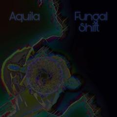 Fungal Shift (Noita Tribute)