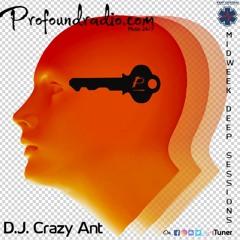 Profoundradio Mix #141 Deep