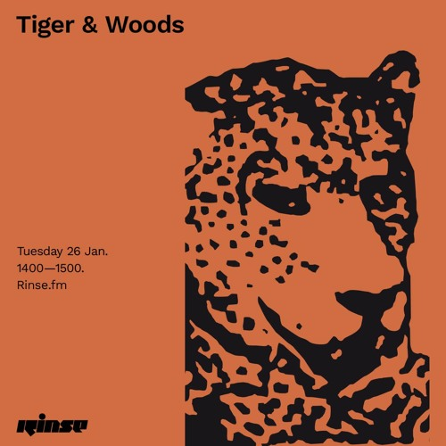 Tiger & Woods - 26 January 2021