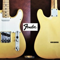 Fender Telecaster 1969 70 287273 Ch1