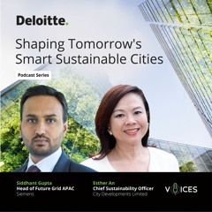 Shaping Tomorrow's Smart Sustainable Cities