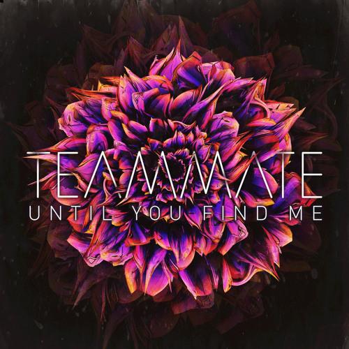 Until You Find Me
