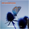 Download LiftChain - Metamorphosis (Extended Club Mix) [Premier League Recordings] Mp3