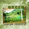 Download Wonderland of Green Mp3