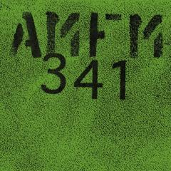 AMFM I 341