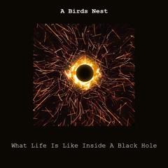 What's Life is Like inside a Black Hole