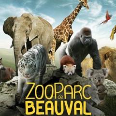 CE QU EN PENSENT LES AUDITEURS - Réouverture du ZooParc de Beauval
