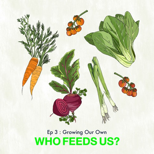 """""""Who feeds us?"""" Episode 3: Growing our own"""