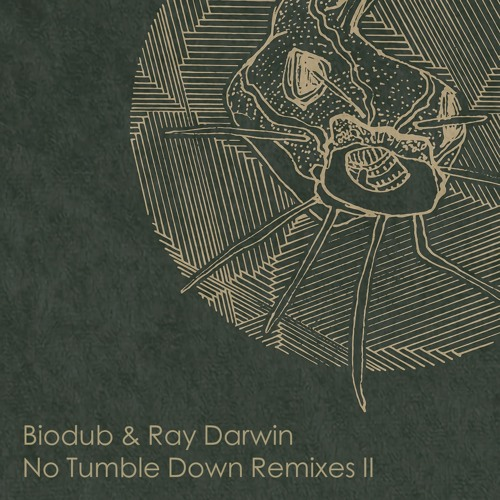 No Tumble Down Remixes Part 2 (Preview I Release May 14th)