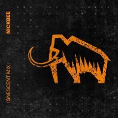 NickBee - Ignescent Mix 003