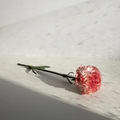 ayato fujita & yougo hiratsuka - You leave it all behind