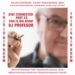 Stay Connected 043 / This Is Big Room (Mixed By Dj Profesor)