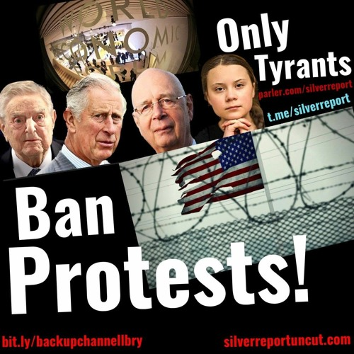 They Want To Ban The Right To Assemble, Free Speech & Gun Rights, All Critical To The Great Reset