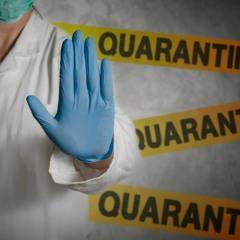 quarantine Freestyle
