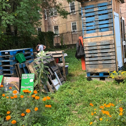 Queens Composters Worry for their Future