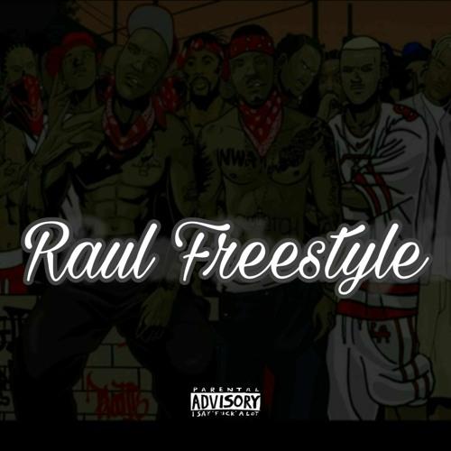 Raul Freestyle